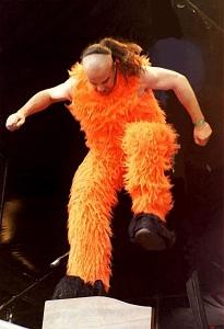 alf-orange-auf-orgel